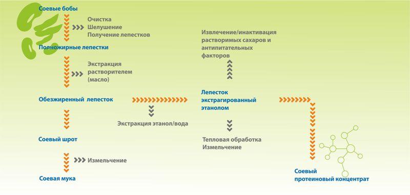 Технологический процесс получения соевого белкового концентрата